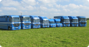 We cater for  individual horses on shared loads