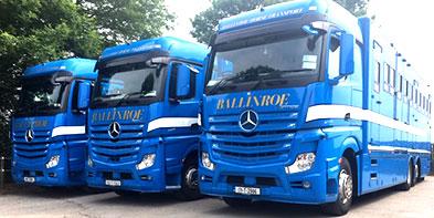 Ballinroe-Fleet-1.jpg